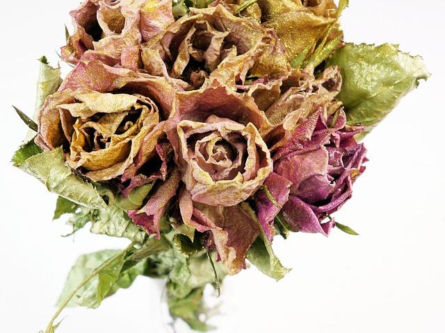 kytice ze sušených květů