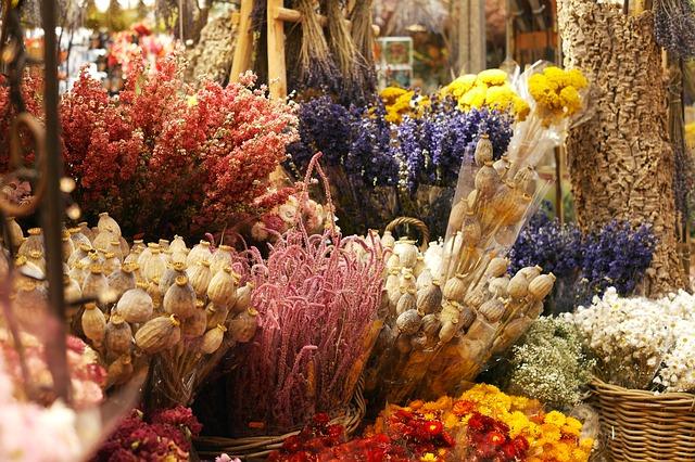různé druhy barevných sušených květin